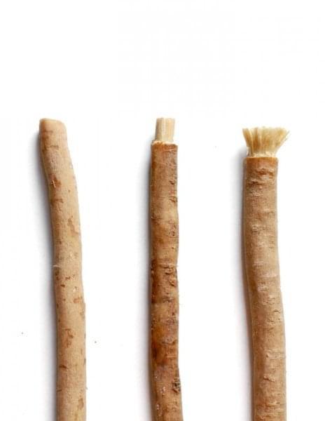 Přírodní zubní kartáček